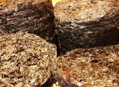 紫菜一般长在海边的岩石上,不算是一种真正的蔬菜