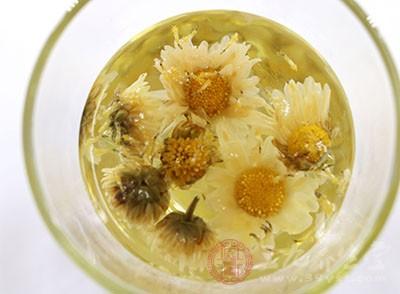 菊花茶的功效与作用 孕妇可以喝菊花茶吗
