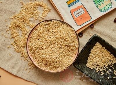粳米是什么米 粳米竟有这些意想不到的功效