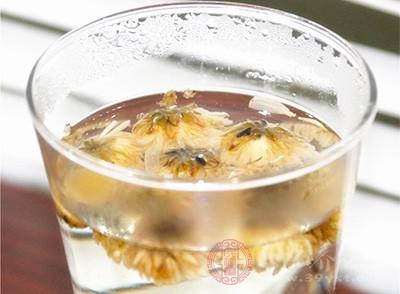 菊花茶应该怎么泡 掌握正确冲泡方法很重要