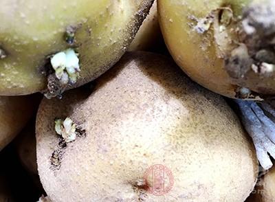土豆发芽了之后可以吃吗 土豆有哪些功效