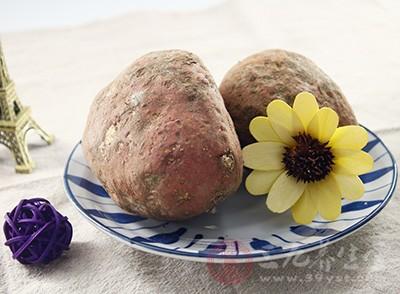 红薯的食用禁忌 红薯的营养价值有哪些