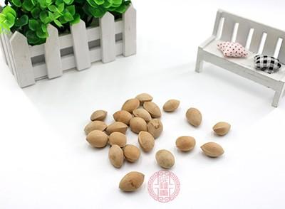 白果的功效与作用 白果有哪些保存方法