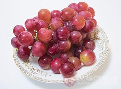 营养学家指出,葡萄对于人体脾胃健康的保健作用较强