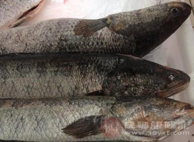怎样做鱼好吃又简单 3大健康的做法