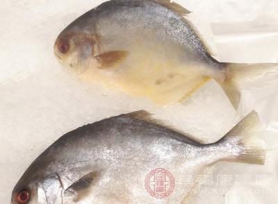 小鲳鱼怎么做好吃 鲳鱼的食用禁忌是什么