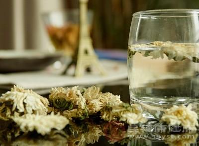 菊花茶的功效与作用有哪些 菊花茶怎么喝
