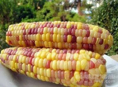 关于彩色玉米