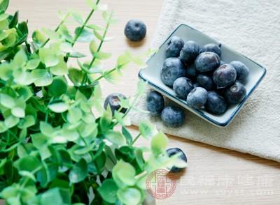 蓝莓的营养价值 女人吃它可以预防癌症