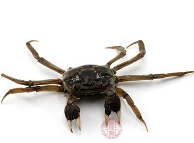 青蟹是什么 吃青蟹要注意什么