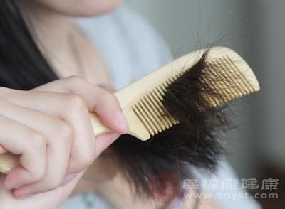 但是梳头发需要使用柔软的阔齿来梳头