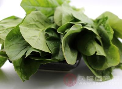 菠菜怎么做好吃 菠菜与它同食容易腹泻