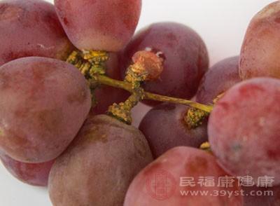 葡萄籽的功效 葡萄籽这样吃效果更好