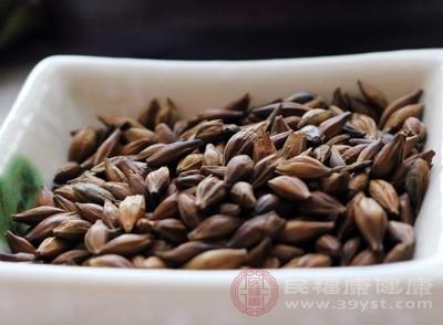 大麦茶含有抑制癌变的特定物质