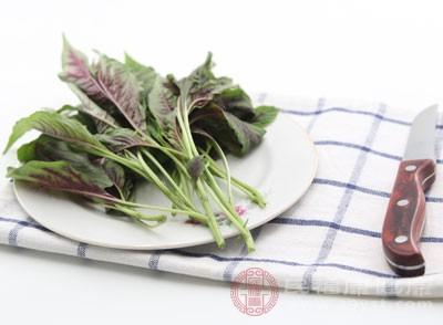 野苋菜含有大量的维生素、胡萝卜素↑等