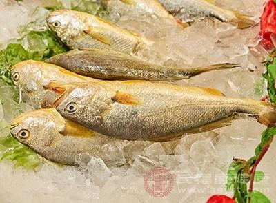 红烧黄鱼的做法 黄鱼竟然还有这功效