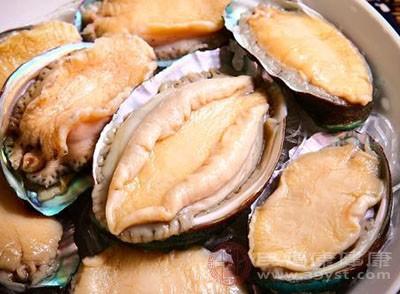 鲍鱼是一种海产品