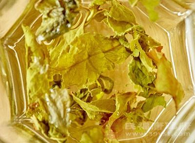 乌龙茶的泡法 乌龙茶竟然对它有很大效果