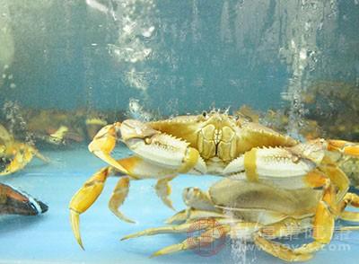 螃蟹的作用与功效 螃蟹不能和这些食物一起吃