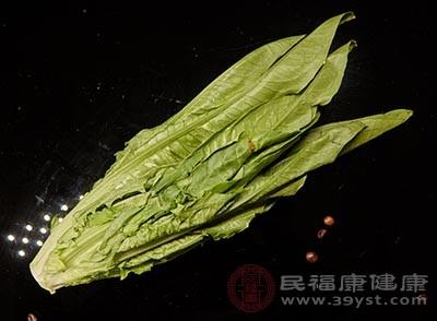 生菜中含有一种叫原儿茶酸的物质