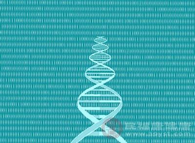 研究发明 40%疾病由遗传激起 25%由情况造成