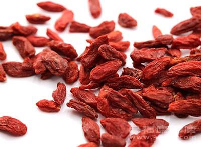 枸杞子属于浆果,汁液充沛,可滋养阴液