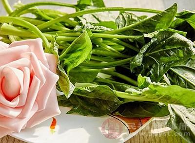 提高免疫力的食物还有菠菜