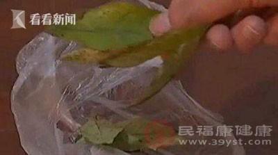 对方还给他开了一些绿色的叶子和黄色的药粉