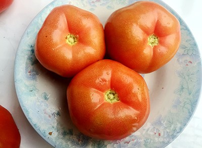 但凡有专家说西红柿吃多了不好,就会有人说西红柿吃了会中毒。