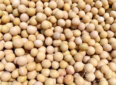 大豆中含有多种矿物质,可以补充钙质