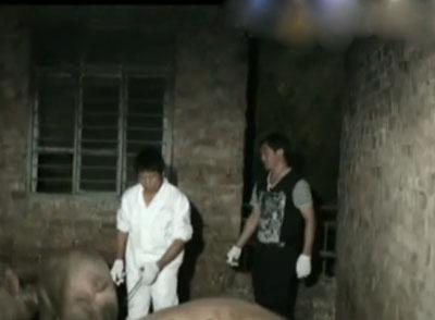 温州瓯海区瞿溪街道有个生猪非法屠宰点
