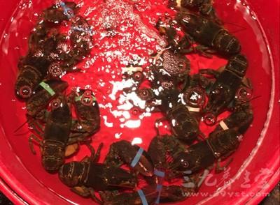 用什么东西洗过的小龙虾千万不能吃呢