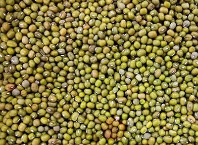 将绿豆、赤小豆、百合洗净,用适量清水浸泡半小时