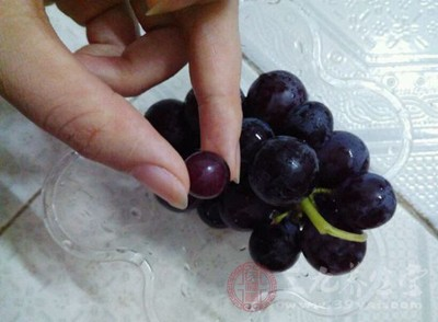 葡萄籽是什么 葡萄籽有哪些作用与功效