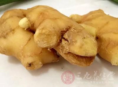 生姜是什么 生姜发芽能吃吗