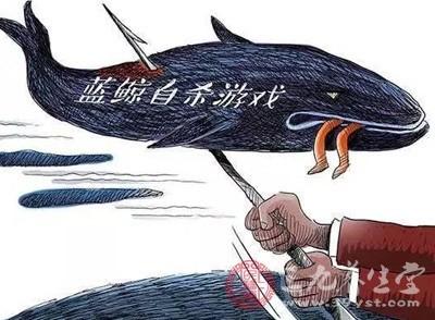 从蓝鲸到人体刺绣 青少年为何沉迷死亡游戏