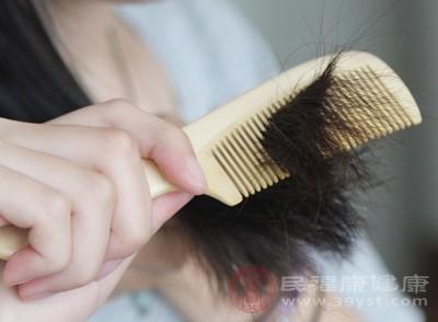梳头的误区 这样的梳子以后别再用了