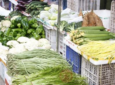 常见蔬菜的致癌效果比较