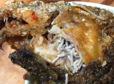 界牌镇饭店活鱼里面竟吃出蛆虫