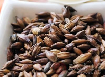 大麦是五谷,它比较温和,所以,孕妇可以喝大麦茶
