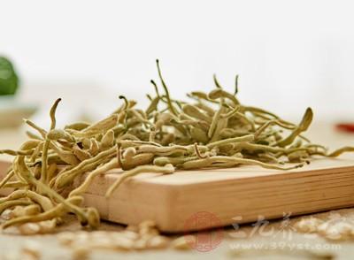 金银花是什么 女人用这物能美容抗衰老