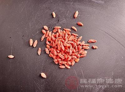 枸杞子对人类的心脑血管有明显的保护作用
