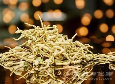 金銀花的花、葉加水,先用猛火后用小火蒸30分鐘