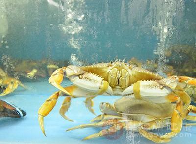 跌打损伤、骨折淤肿的人适合适量吃螃蟹