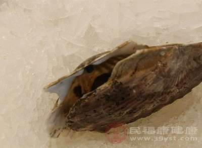 生蠔又叫做牡蠣,它在一定的程度上能夠起到加強肝臟解毒功能的作用