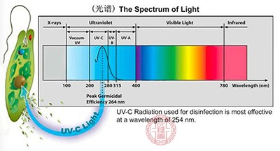 疫情期间如何使用紫■外线消毒 医★生也需要了解的科普
