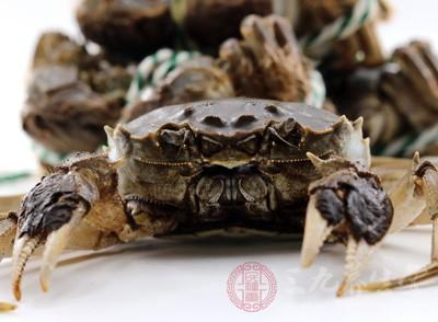 秋天已经到了,现在是吃螃蟹的最佳时机