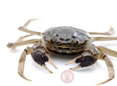 汗毛凛凛 上海市民买的梭子蟹体内有红色小虫