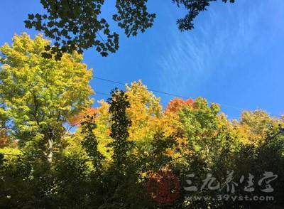 秋分養生 秋分養生注意五個關鍵點效果更好