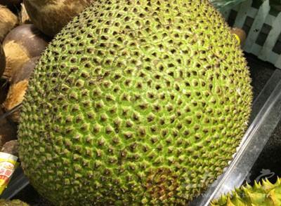 菠萝蜜核怎么吃图解_菠萝蜜的核怎么吃